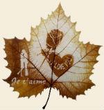 Онлайн гадание Осенняя любовь